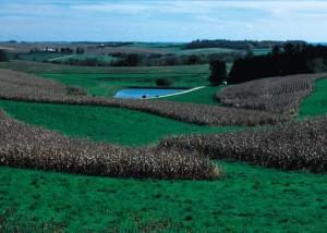 farm sustainable practices